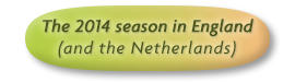 The 2014 season in England (and the Netherlands)