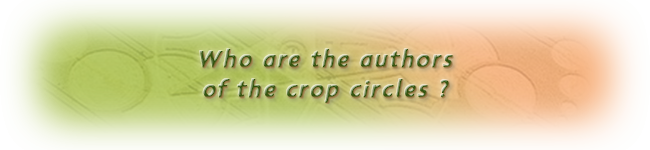 Who are the authors of the crop circles ?